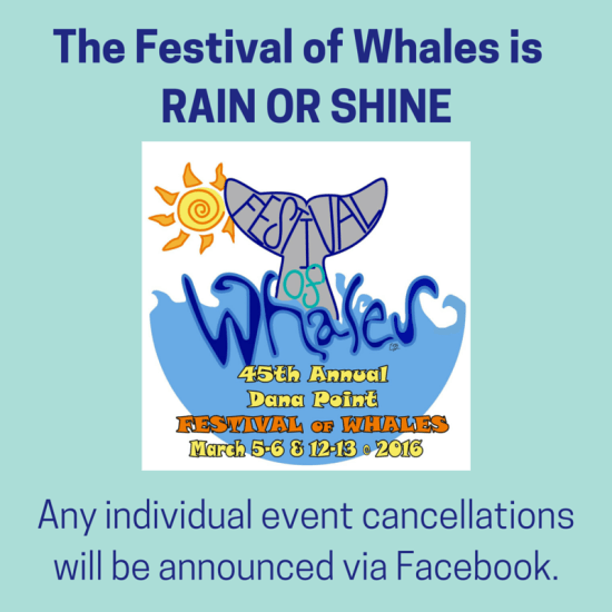 Dana Point Festival of Whales March 6 2016