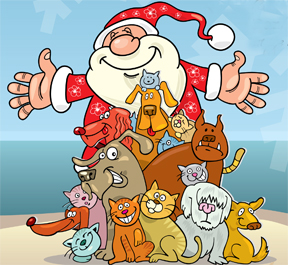 santa-paws-image-courtesy-of-petprojectfoundation-org