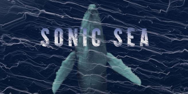 Sonic Seas at Ocean Instittute March 11 2018 Courtesy of SonicSea.org
