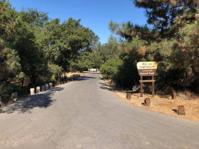 Blue Jay Campground Courtesy of Cleveland National Forest