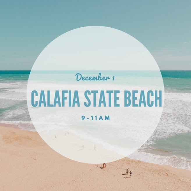 OC CoastKeeper SC Beach Clean Up December 1 2018