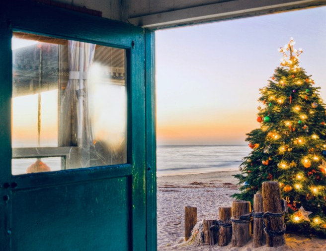 Crystal Cove Tree Lighting Saturday December 1 2018