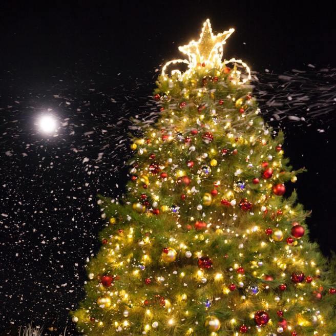 Laguna Niguel Christmas Tree Lighting 2018 Courtesy of The CIty of Laguna Niguel