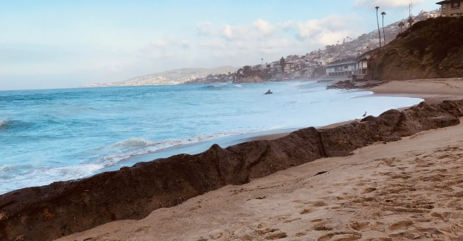 Laguna Beach Coast January 2019 by SouthOCBeaches.com