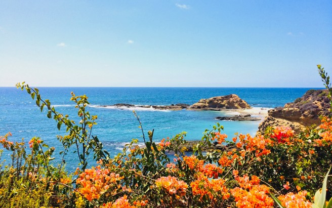 Laguna Beach Courtesy of Karin Horlick