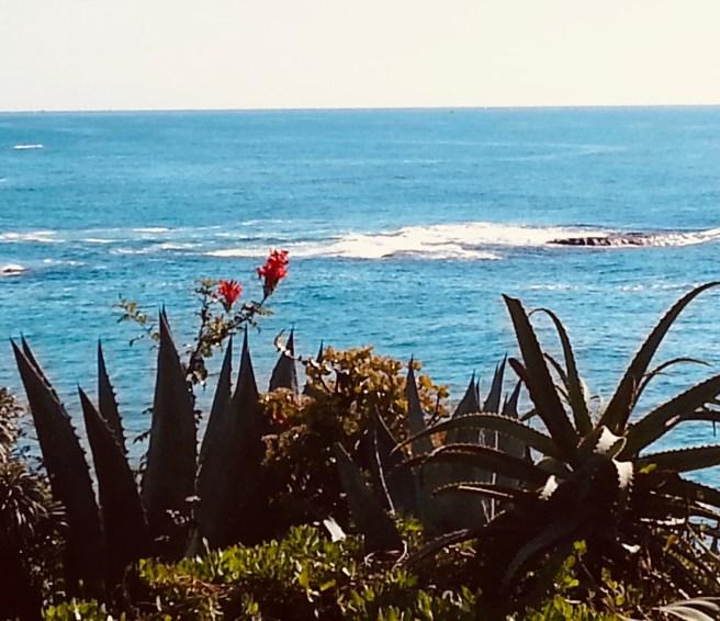 Laguna Beach Courtesy of SouthOCBeaches.com