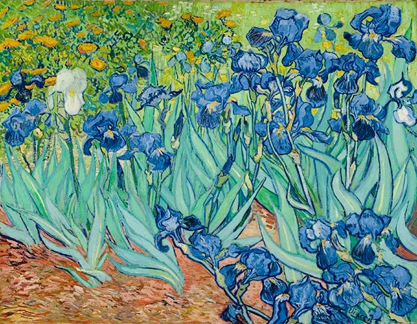 Vincent Van Gough Irises Courtesy of Google Arts & Culture & J Paul Getty Museum
