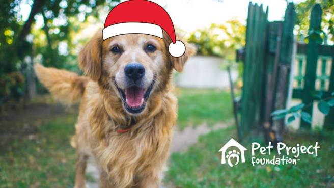 Dana Point Harbor Santa Paws December 4 & December 5 2020 Courtesy of Pet Project Foundation