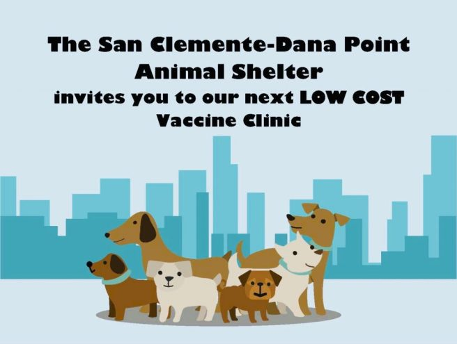 San Clemente Dana Point Animal Shelter Low Cost K9 Clinic Sunday August 29 2021