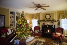 2017_1209_Holiday_House_48