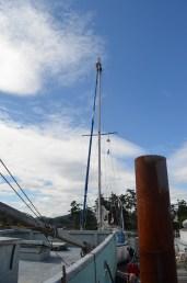 Nice change. Luksana up the mast.