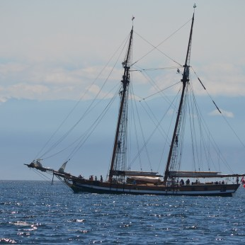 A recreation of an 1872 schooner. Now used as Sail training vessels
