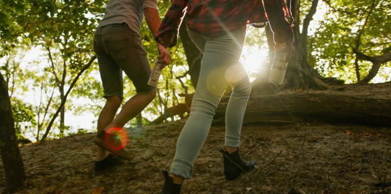 Hiking Trails in Roanoke