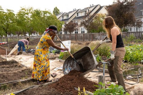 Photo depicting two female-presenting individuals laying woodchips from a wheelbarrow onto a garden path.