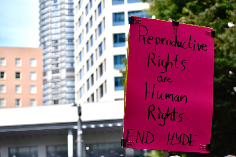 """Photo depicting a protest sign that reads """"Reproductive Rights are Human Rights End Hyde."""""""