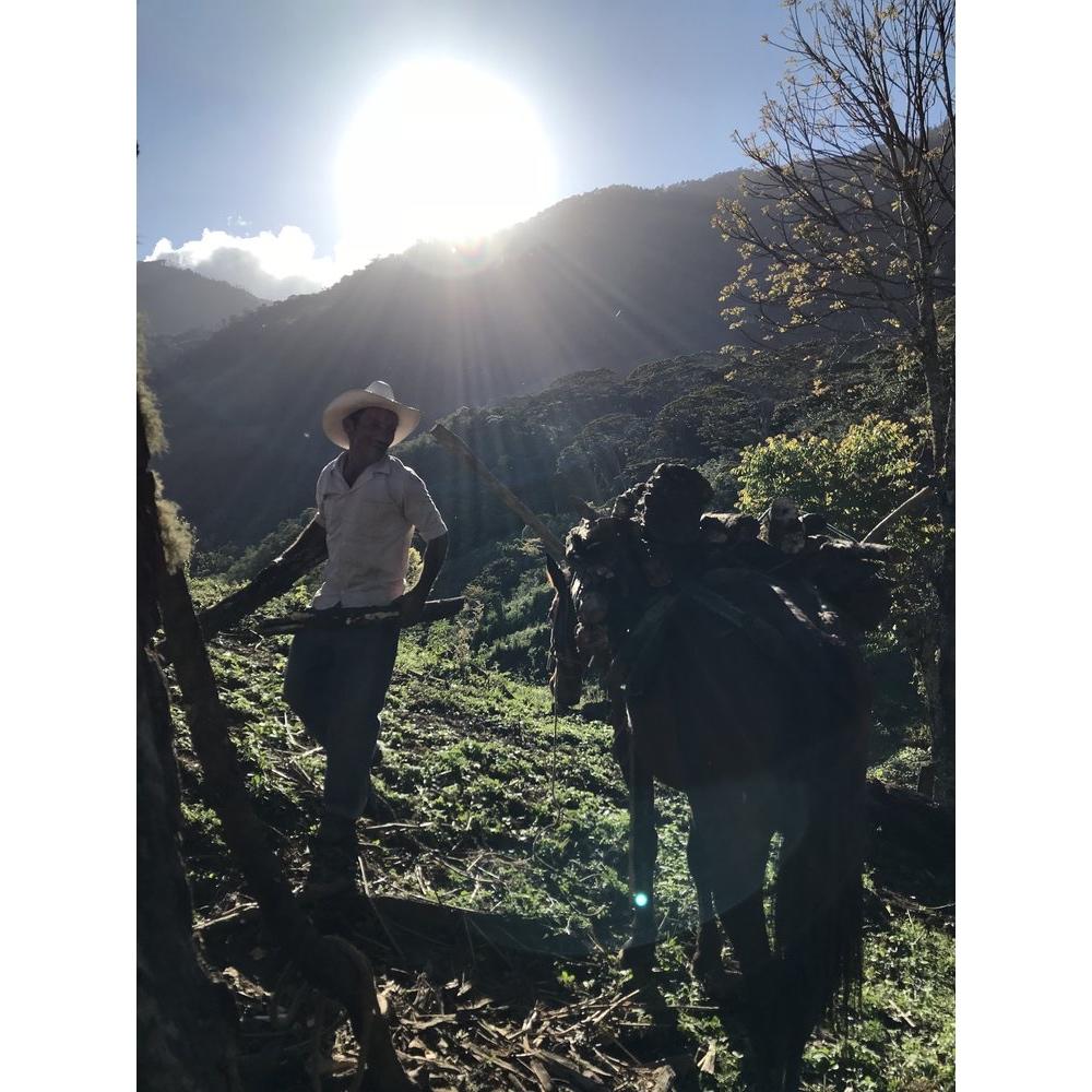 buena-vista-antigua-guatemala-5