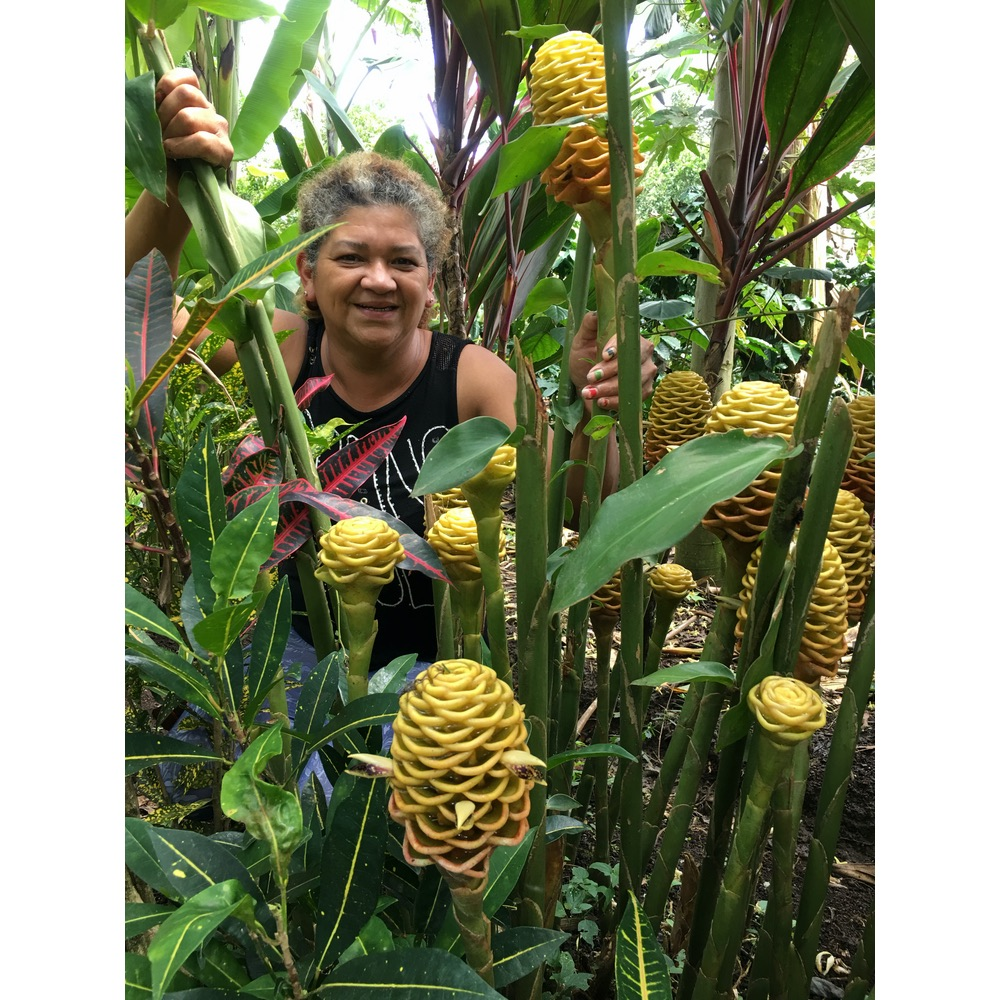 Coffee farmer Maria Velazquez Behind some of her exotic plants