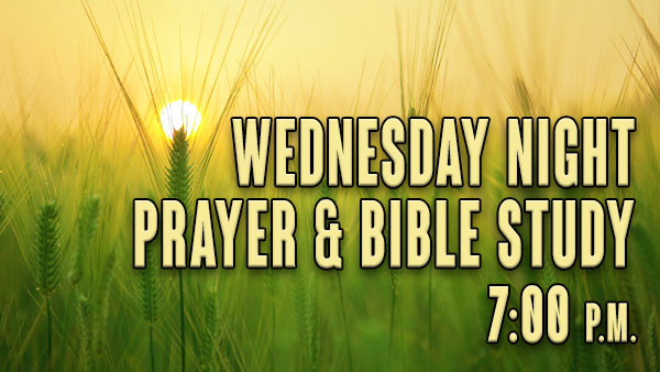 Wednesday Night Prayer & Bible Study