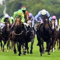 Horse Racing Returns