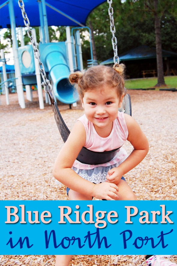 Blue Ridge Park in North Port is a lot of fun! Check out pictures and get more info about it's amenities.