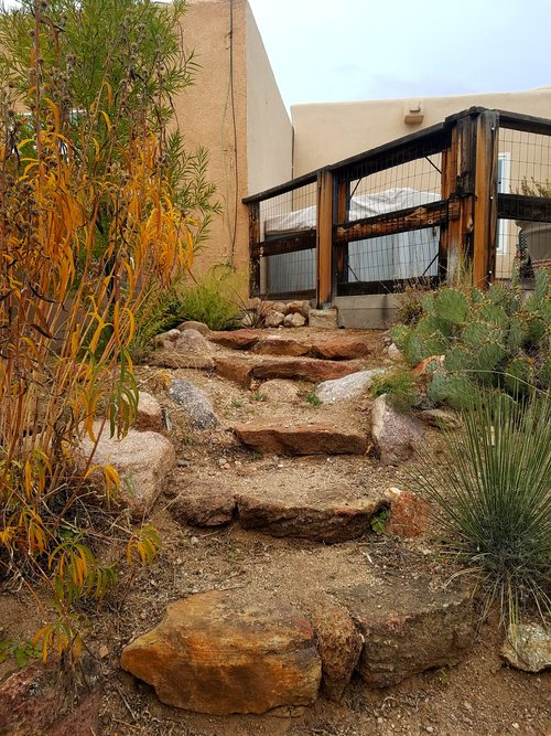Southwest landscaping xeriscape albuquerque landscaping native plants