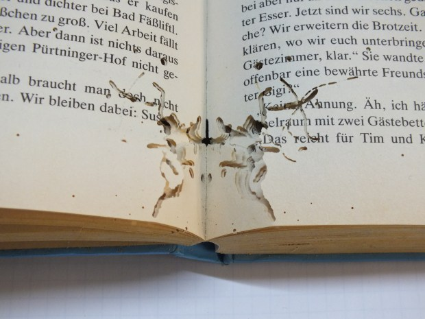 Pest damage to the pages of a book