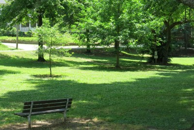 Cameron Park - Median Park