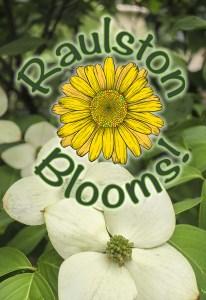 Raulston Blooms! @ JC Raulston Arboretum at NC State University | Raleigh | North Carolina | United States