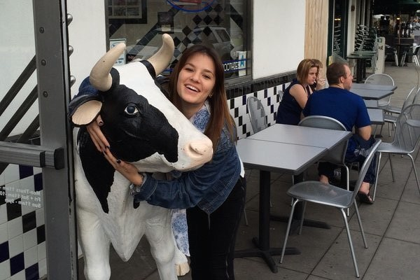 This plastic life-size cow in Coronado island was enough to make my day.  Photo Credit: Jorge Carerra