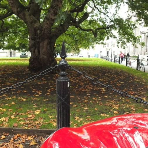 Dublin attractions Dublin Trinity College mini cooper