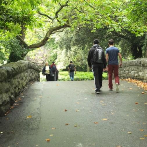 hen's Green bridge Dublin