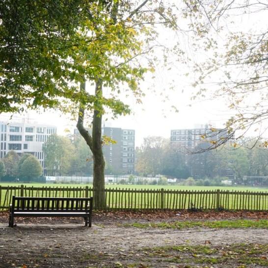 autumn fall Holland Park London