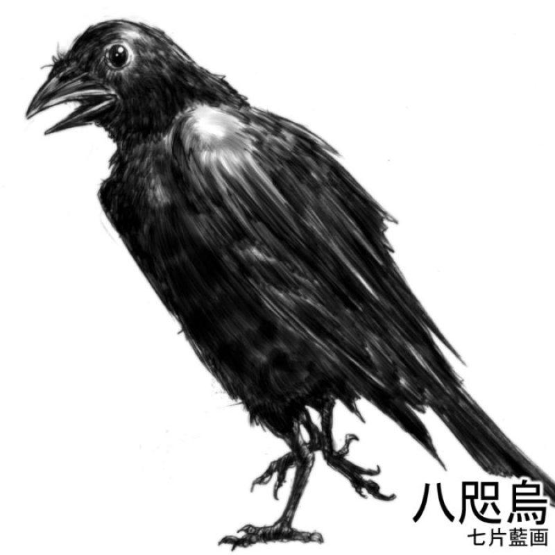 八咫烏のイラスト2