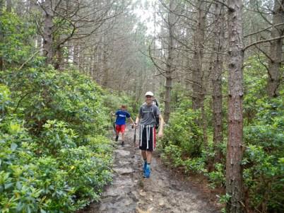 A muddy trail