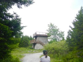 Spruce Knob Observation Tower