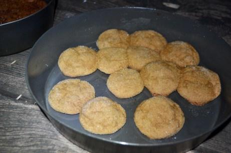 Molasses cookies, not bad!