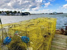 Crab pots on the main dock