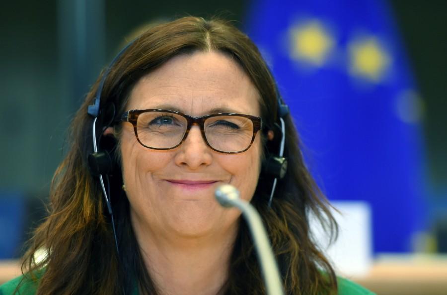 europaeische union #интервью DCFTA, VLAP, визы, Грузия, ес, Сесилия Мальмстрём