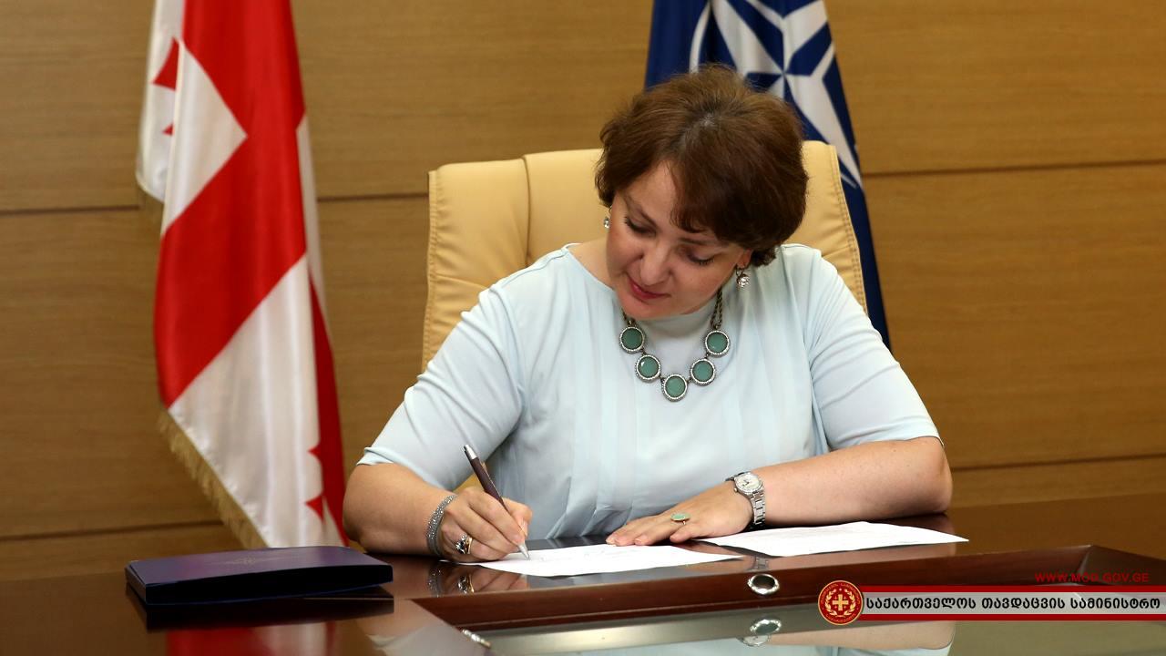 Министр обороны Грузии Тинатин Хидашели уходит в отставку