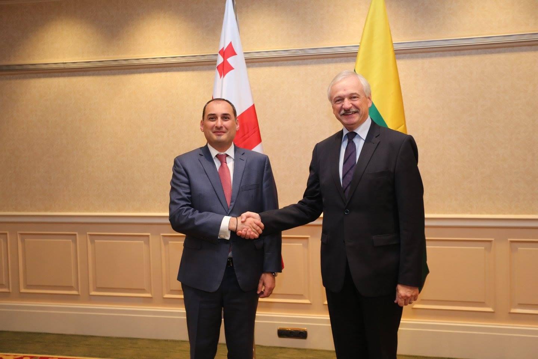 Кумсишвили: Литва является стратегическим партнером Грузии