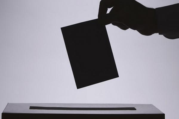 Делегация ПАСЕ подвела итоги предвыборного мониторинга