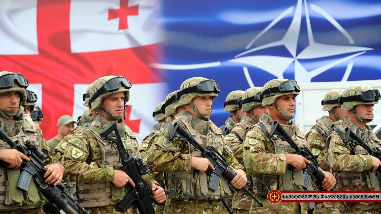 Советник президента Грузии: интеграция в НАТО усилит безопасность восточного фланга