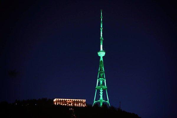 """Тбилиси участвует во всемирной кампании """"Global Greening"""""""
