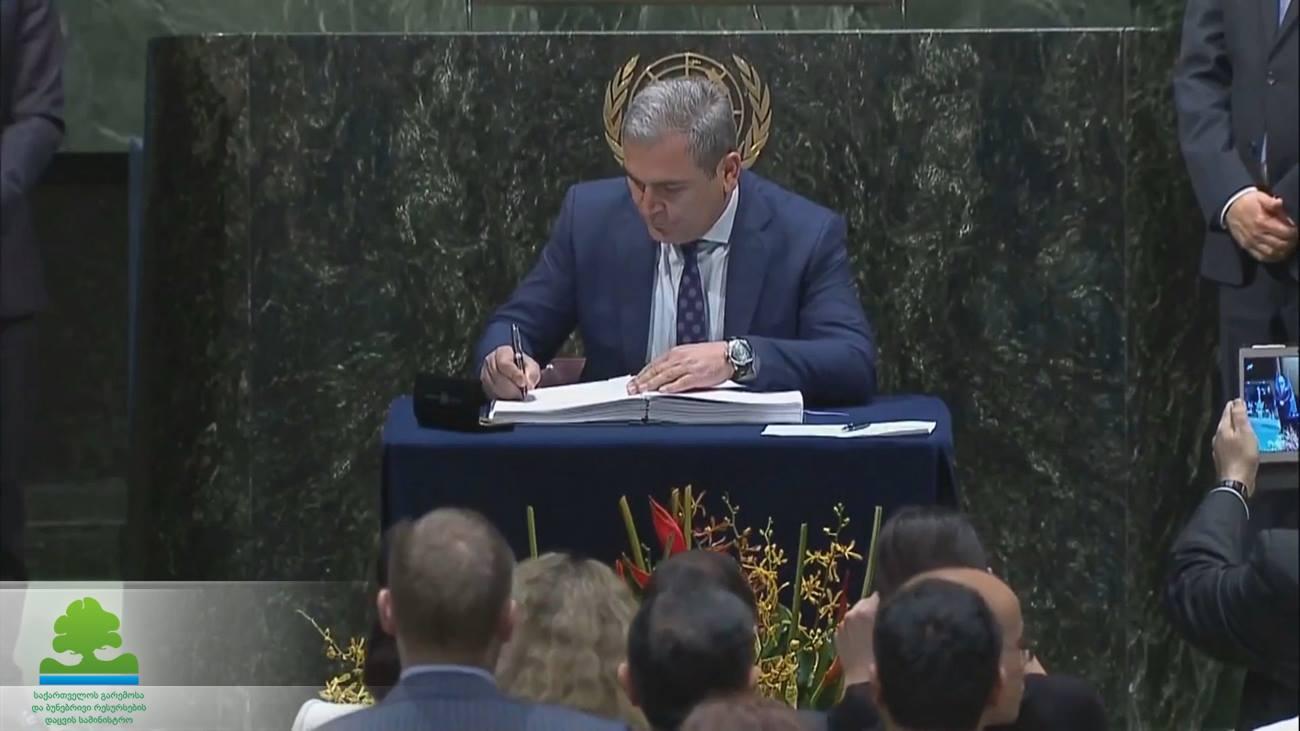 Грузия присоединилась к Парижскому соглашению по климату