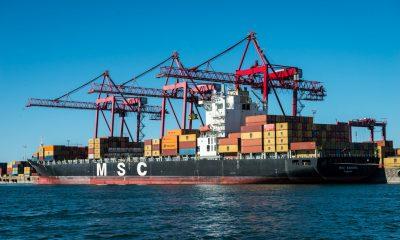 Грузинские нелегалы в морском контейнере