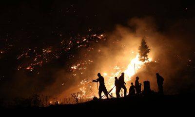 Масштабный пожар в Грузии: хроника событий