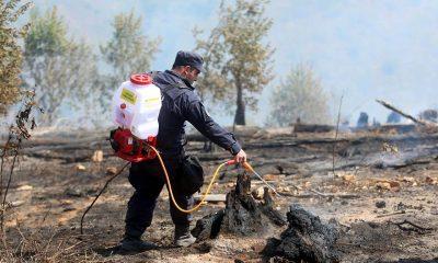Пожар в Абастумани полностью локализован
