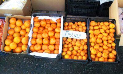 Долидзе: Грузовики с мандаринами в Россию - не единственный источник дохода