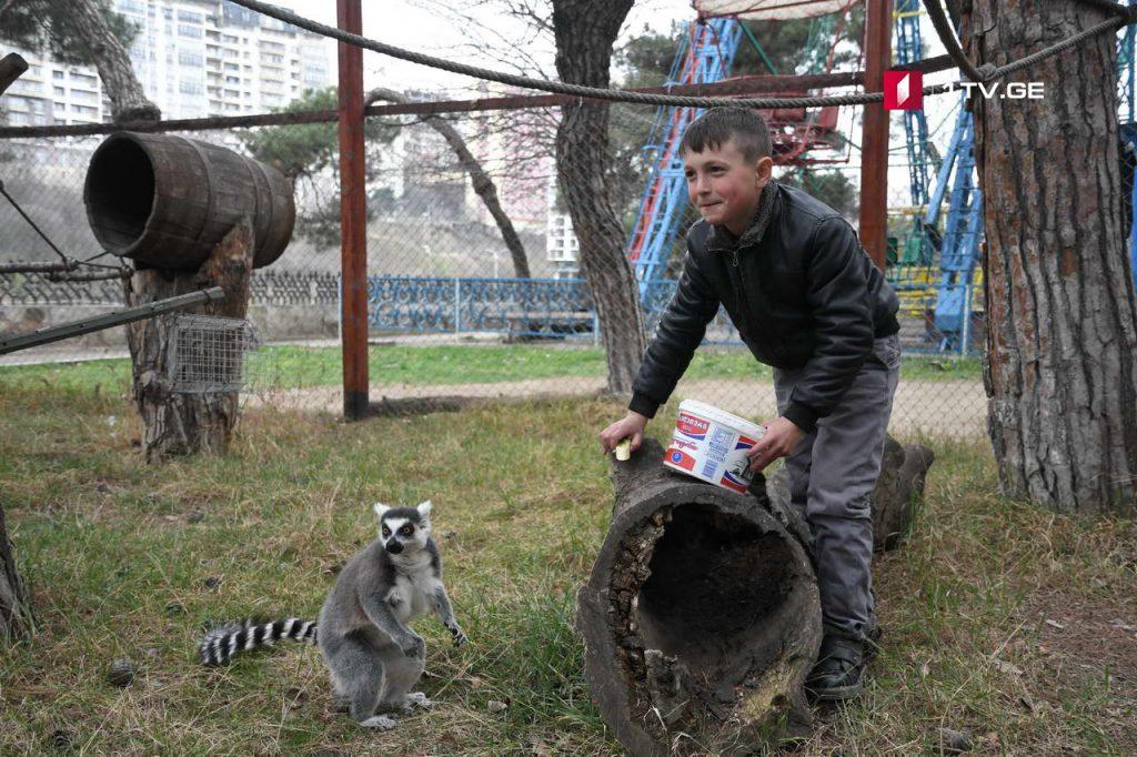 Zoo 7 #новости Грузия, зоопарк, полиция, тбилиси