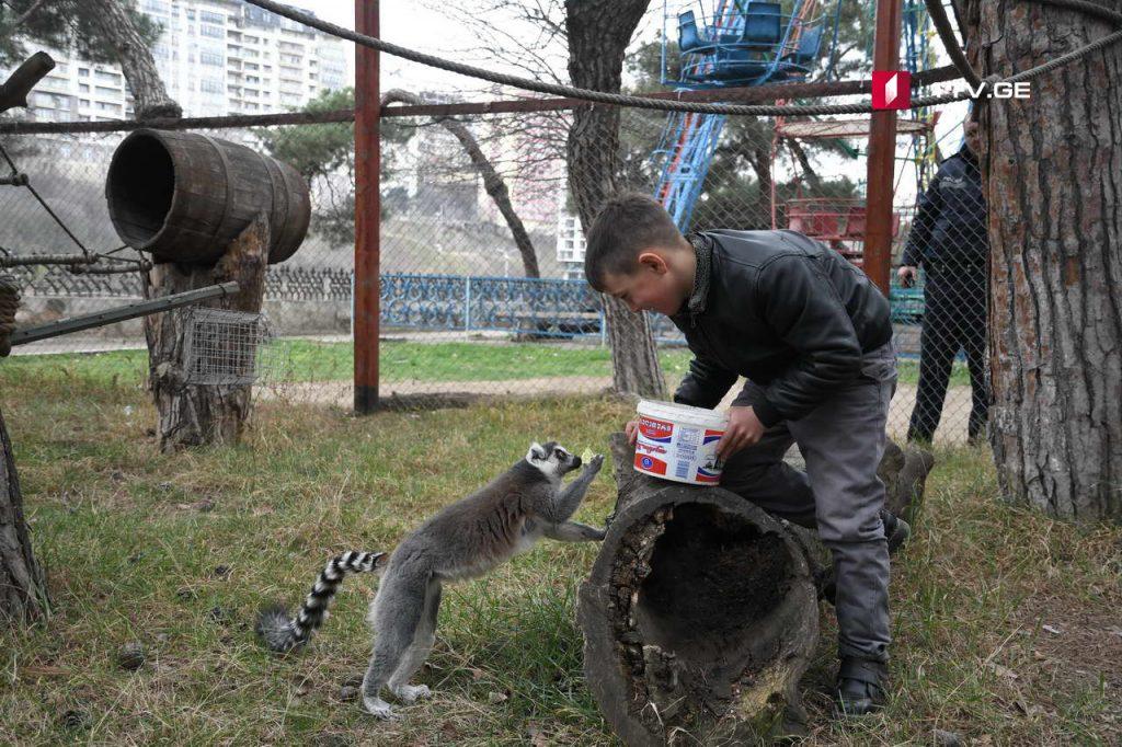 Zoo 9 #новости Грузия, зоопарк, полиция, тбилиси